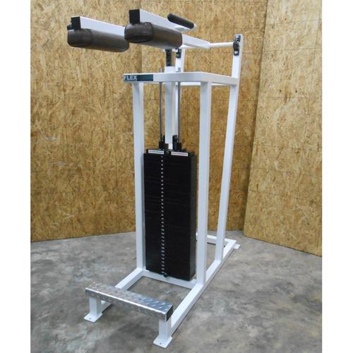 Flex Performance Systems Standing Calf Gym Equipment